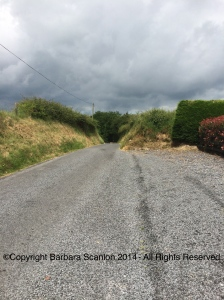 Road in Curraghmore