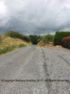 Road in Curraghmore